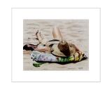 Sunbather on Louie's Beach